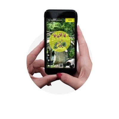 zoo's petals AR game